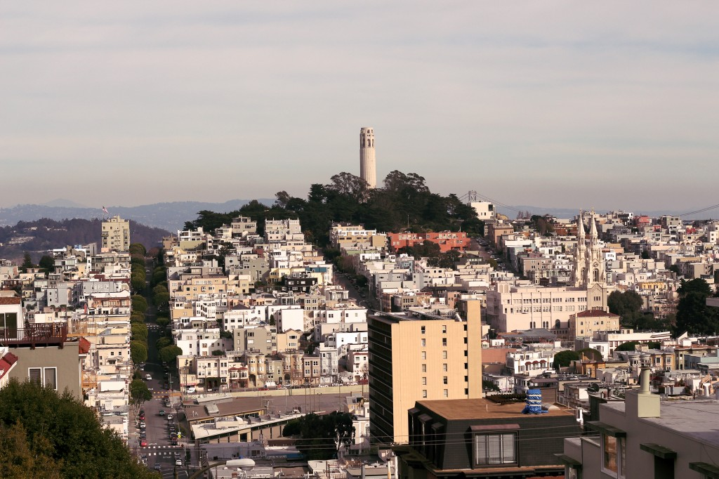 Vue imprenable sur North Beach et le Coit Tower.